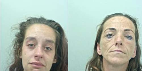 Women jailed for brutal meat cleaver assault